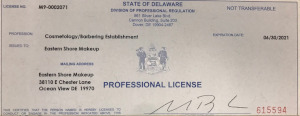 Cosmetology and Barbering License